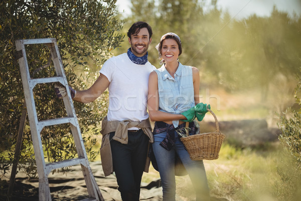 Smiling young couple standing by ladder at olives farm Stock photo © wavebreak_media