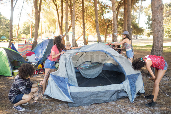 Friends setting up their tents on field Stock photo © wavebreak_media