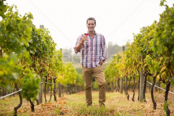 Portré mosolyog férfi tart üveg bor Stock fotó © wavebreak_media