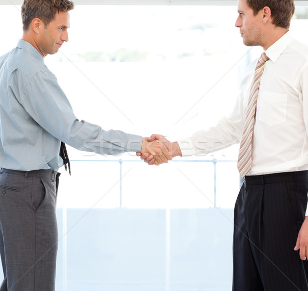 Two partners concluding a deal by shaking hands standing in the office Stock photo © wavebreak_media