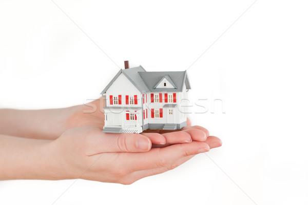 Kezek tart miniatűr ház fehér nő Stock fotó © wavebreak_media