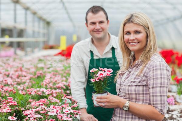 Smiling woman holding flower pot with employee in garden center Stock photo © wavebreak_media