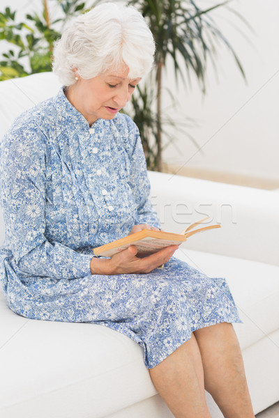 Elderly calm woman reading a old novel Stock photo © wavebreak_media