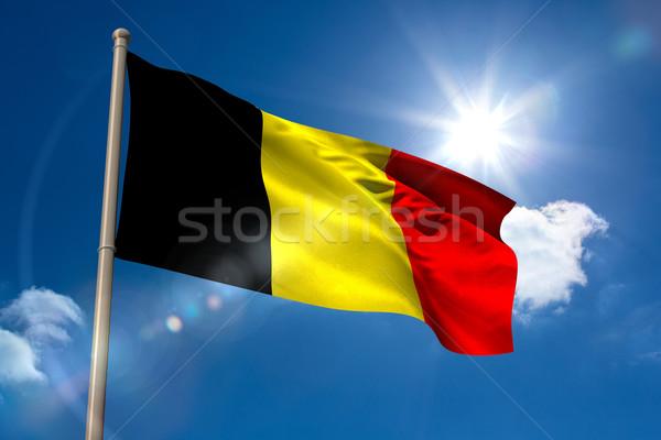 Belçika bayrak bayrak direği mavi gökyüzü güneş ışık Stok fotoğraf © wavebreak_media
