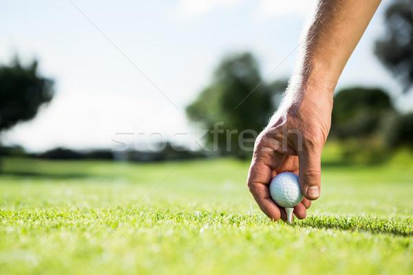 Golfista pallina da golf campo da golf erba sport Foto d'archivio © wavebreak_media