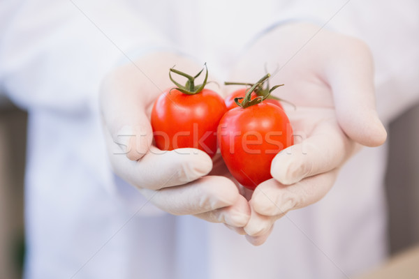 Voedsel wetenschapper tonen tomaten laboratorium man Stockfoto © wavebreak_media