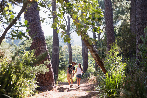 Hikers holding hands on trail in forest Stock photo © wavebreak_media