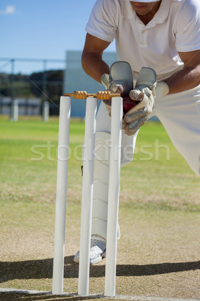 Low section of wicketkeeper catching ball behind stumps Stock photo © wavebreak_media