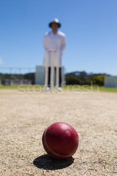 クリケット ボール ピッチ 審判 立って 青空 ストックフォト © wavebreak_media