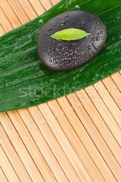 A small leaf on a black stone on a bigger leaf Stock photo © wavebreak_media