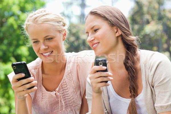Foto stock: Femenino · amigos · teléfono · belleza · verano · verde