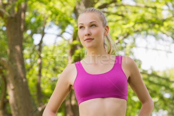Sağlıklı güzel bir kadın spor sutyen ağaçlar park Stok fotoğraf © wavebreak_media