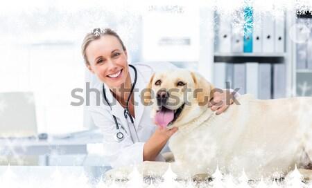 Female veterinarian examining dog Stock photo © wavebreak_media