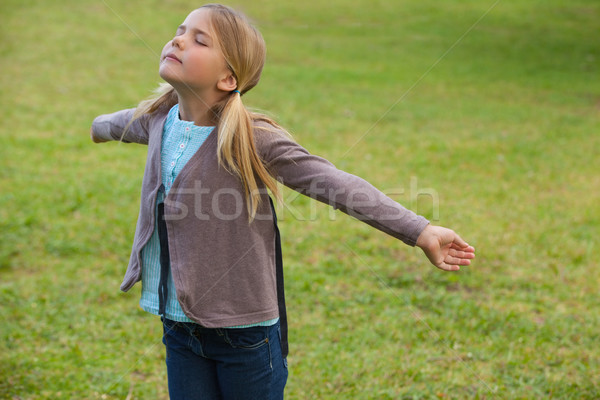 Girl with arms outstretched at park Stock photo © wavebreak_media