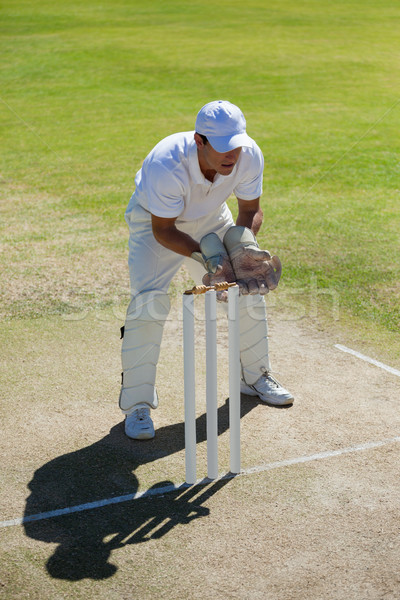 High angle view of wicketkeeper standing behind stumps on field Stock photo © wavebreak_media