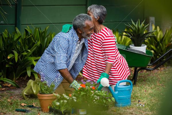 Boldog idős pár átkarol térdel udvar együtt Stock fotó © wavebreak_media