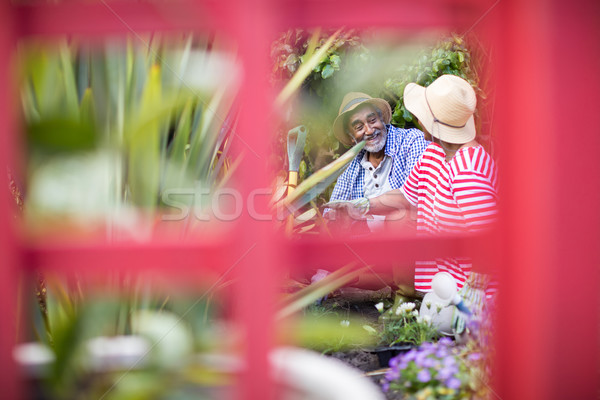 Smiling couple gardening seen through metallic structure Stock photo © wavebreak_media