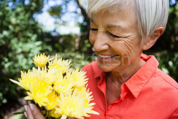Közelkép mosolyog idős nő néz friss Stock fotó © wavebreak_media