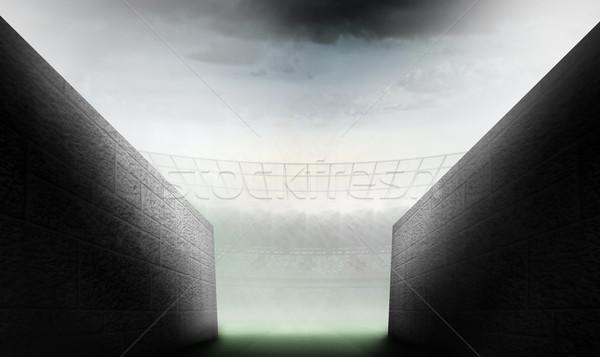 Immagine tunnel rugby stadio Foto d'archivio © wavebreak_media