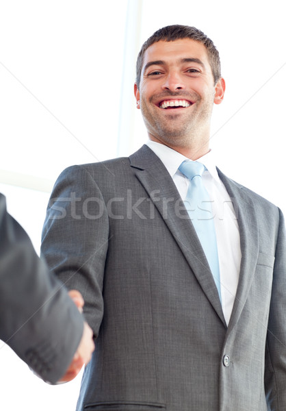 Below view of a happy businessman concluding a deal with a partner Stock photo © wavebreak_media