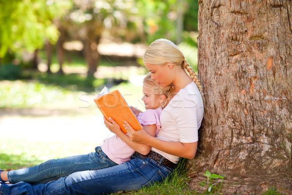 Hija madre mirando álbum foto árbol Foto stock © wavebreak_media