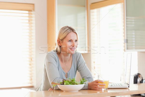 молодые женщины Салат ноутбука кухне стекла Сток-фото © wavebreak_media