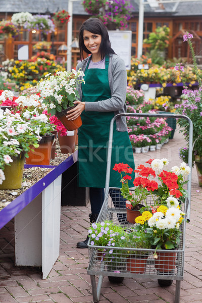Nő tömés növények mosolyog kert központ Stock fotó © wavebreak_media