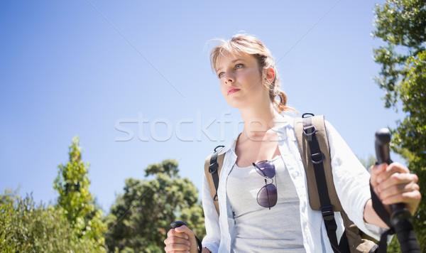 Pretty hiker with backpack walking uphill Stock photo © wavebreak_media