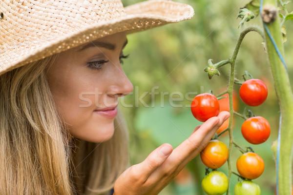 довольно блондинка глядя томатный завода домой Сток-фото © wavebreak_media