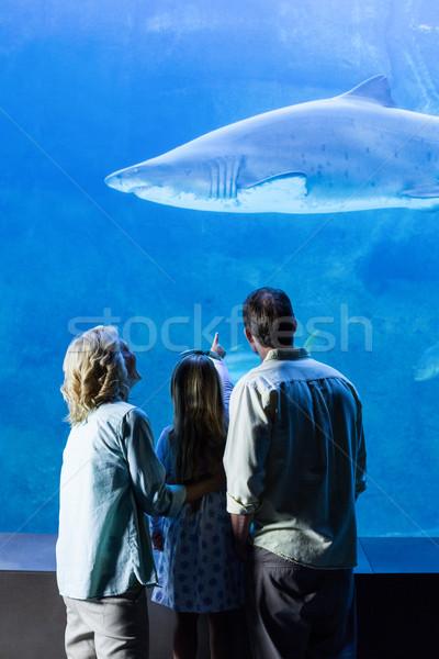 Hátsó nézet család néz tank hal akvárium Stock fotó © wavebreak_media