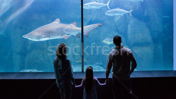 Happy family looking at the fish tank Stock photo © wavebreak_media