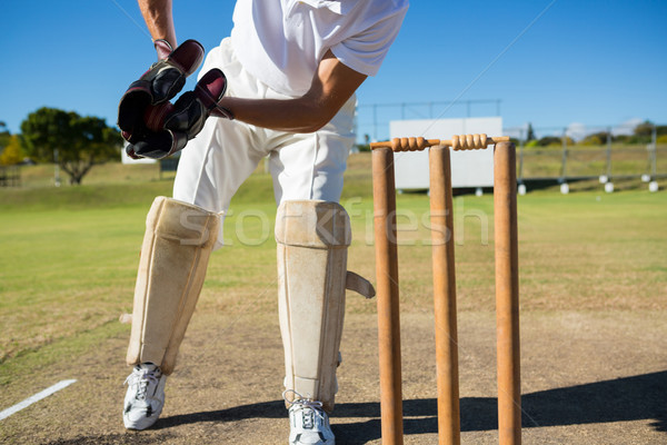Low section of wicket keeper standing by stumps during match Stock photo © wavebreak_media