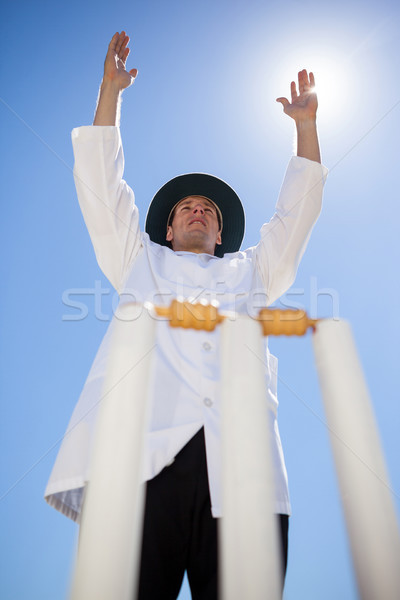 Umpire signalling six at cricket match against sky Stock photo © wavebreak_media