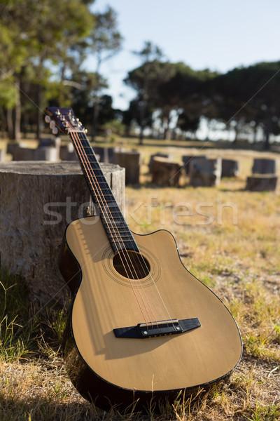 Guitar in the park on a tree stump Stock photo © wavebreak_media