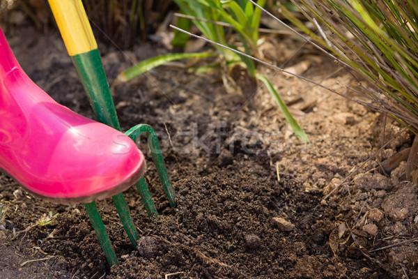 женщину почвы саду вилка счастливым Сток-фото © wavebreak_media