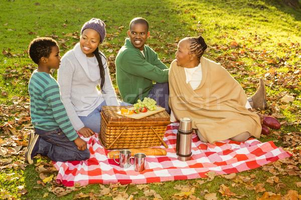 Boldog család piknik nő gyermek anya zöld Stock fotó © wavebreak_media