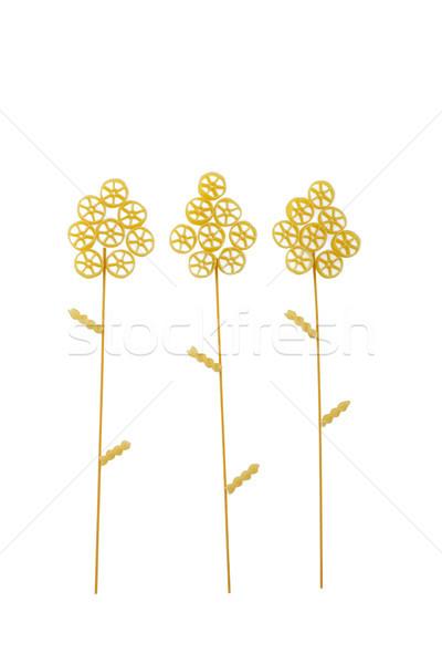 Kilátás növények tészta minta törődés életstílus Stock fotó © wavebreak_media