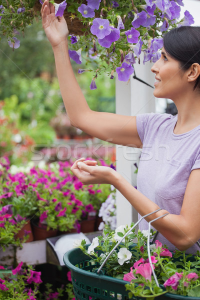 Woman collecting flowers in garden center and putting them in her basket Stock photo © wavebreak_media