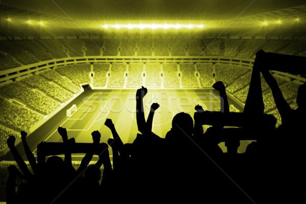 Siluetleri futbol büyük stadyum ışıklar futbol Stok fotoğraf © wavebreak_media