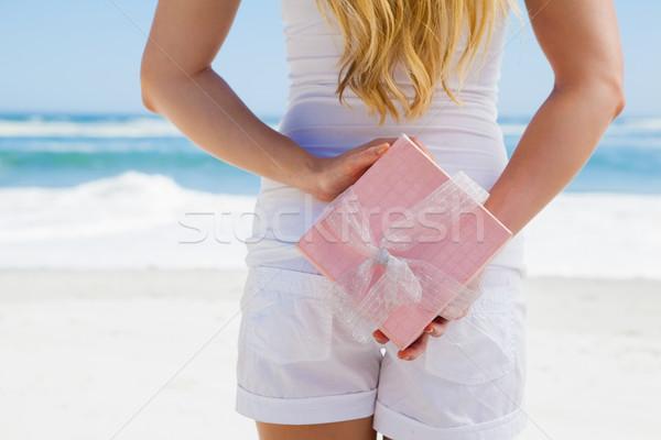 Blond verbergen aanwezig achter Maakt een reservekopie strand Stockfoto © wavebreak_media