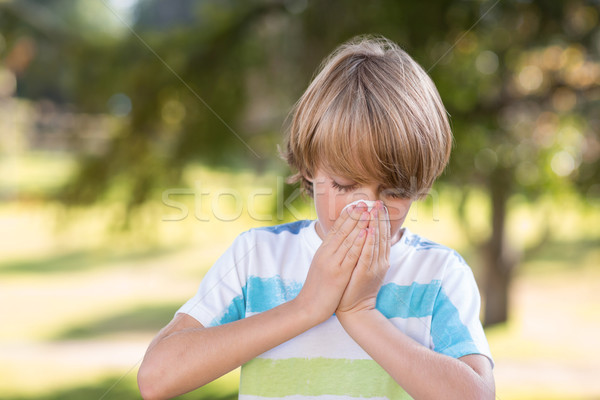 Little boy blowing his nose Stock photo © wavebreak_media