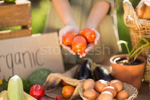 Femme mains trois tomates Photo stock © wavebreak_media