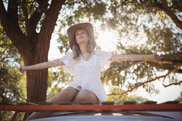 Woman with arms outstretched sitting on van Stock photo © wavebreak_media