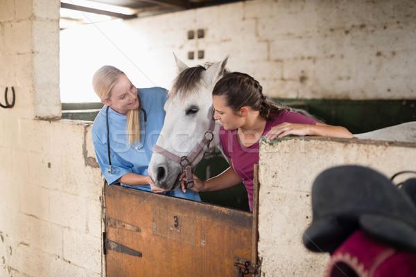 женщины ветеринар женщину глядя лошади Постоянный Сток-фото © wavebreak_media