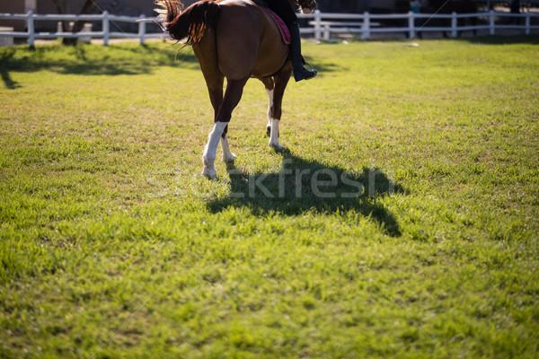 низкий женщины жокей верховая езда лошади Сток-фото © wavebreak_media