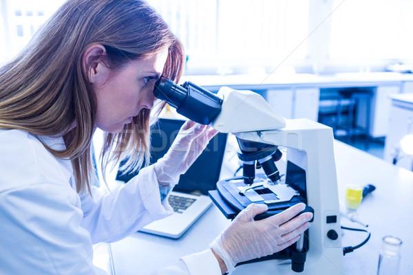 ученого рабочих микроскоп лаборатория университета женщину Сток-фото © wavebreak_media