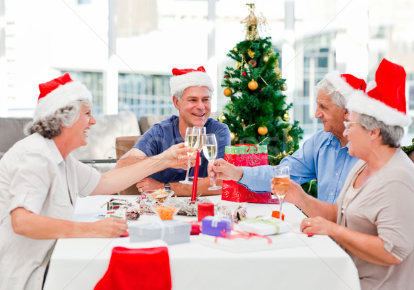 Seniors on Christmas day at home Stock photo © wavebreak_media
