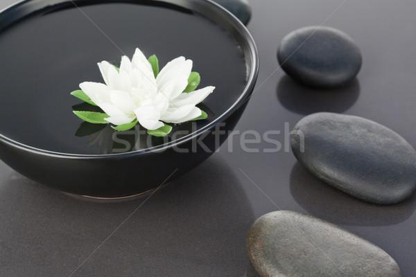 Witte bloem zwarte kom bloem Stockfoto © wavebreak_media