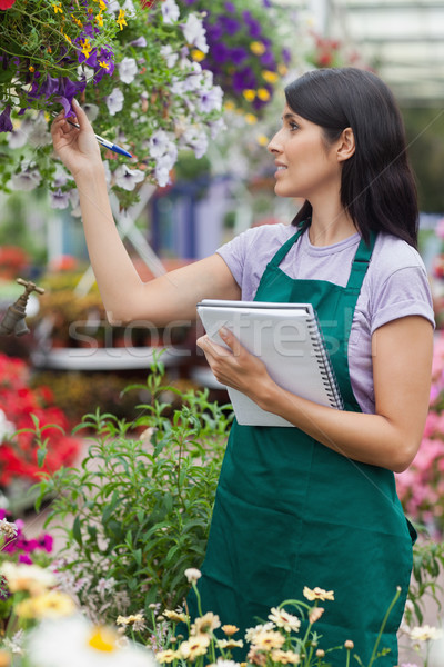 Brunette viewing flowers and taking notes in garden centre Stock photo © wavebreak_media