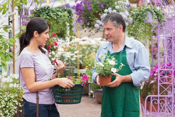 Cliente hablar jardín centro trabajador plantas Foto stock © wavebreak_media